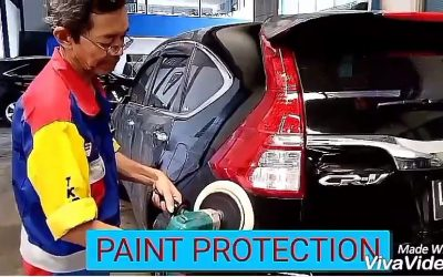 paintprotection